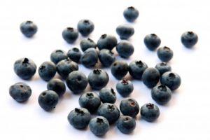 Recipe: Blueberry & Coconut Scones